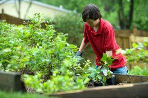 Regreso a clases: un plan benéfico para fomentar la educación al aire libre