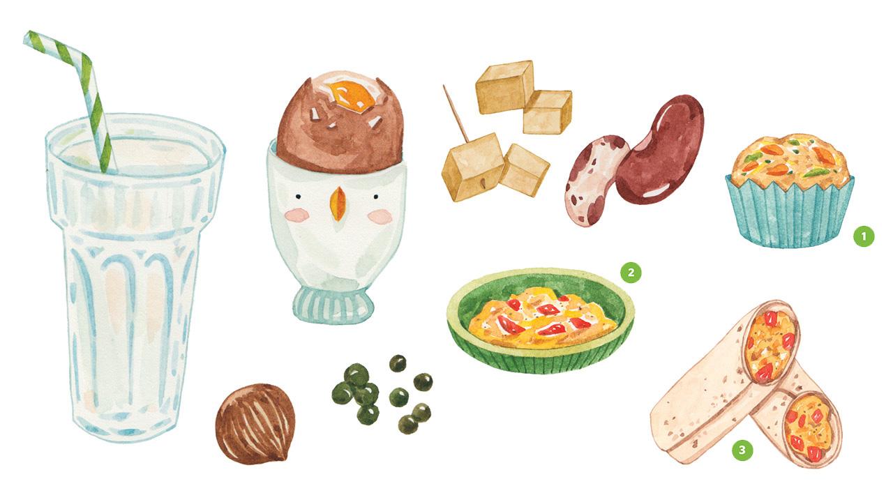 Ilustraciones realistas de un vaso de leche, un huevo pasado por agua, tofu, frijoles, un muffin de huevo, huevos revueltos y una envoltura de huevo que contienen proteínas.