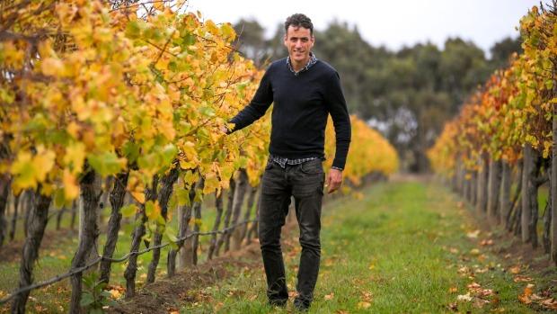 Enoturismo en Victoria: los turistas acuden en masa a los pequeños viñedos