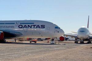 Superjumbo Qantas Airbus A380: las serpientes de cascabel causan problemas a los ingenieros que mantienen aviones en el depósito del desierto